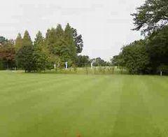 golf051013a