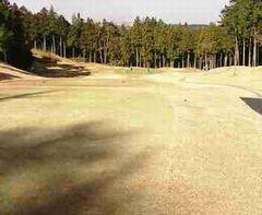 golf1206a