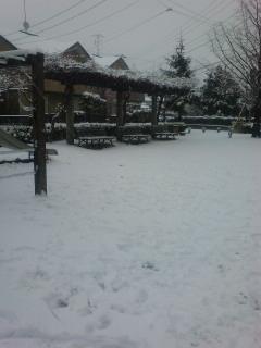 雪の日曜日