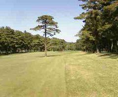 Golf060503a